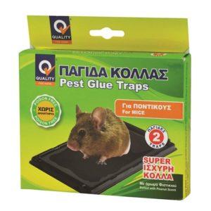 Παγίδα Με Κόλλα Για Ποντίκια
