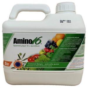 Amino 16