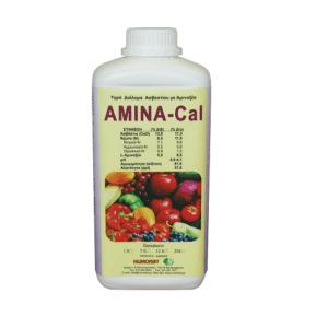 AMINA CAL -Ασβέστιο
