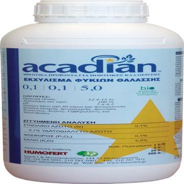 acadian-1-1-5-1-lt_500x500