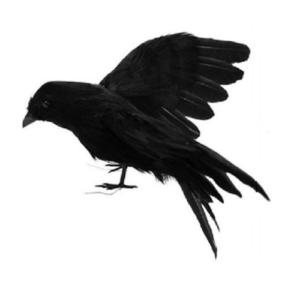 Απωθητικό Ομοίωμα Κορακι Περιστεριών Πτηνών