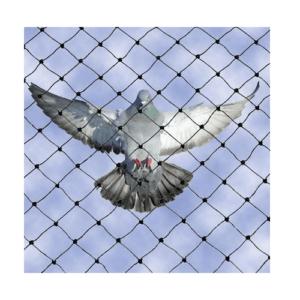 Δίχτυ προστασίας από πουλιά-περιστέριαΔίχτυ προστασίας από πουλιά-περιστέρια