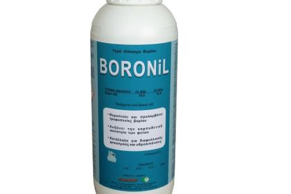 BORONIL